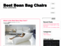Détails : Find Out More On Foam Bean Bag Chair
